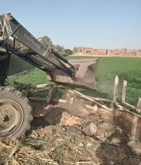 إزاله شدة خشبية على أرض زراعية بمركز بلبيس بالشرقية