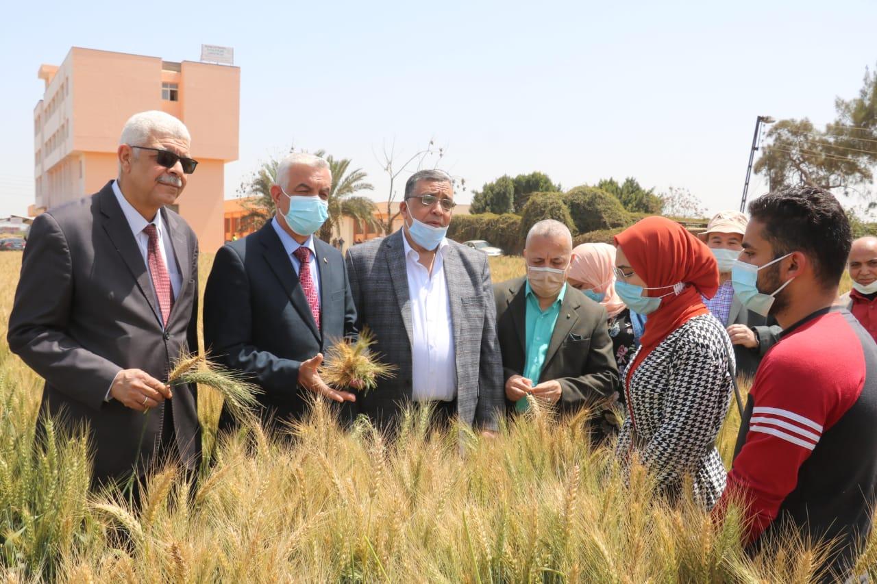 جامعة المنوفية تحتفل بيوم الحقل بمزرعة الراهب