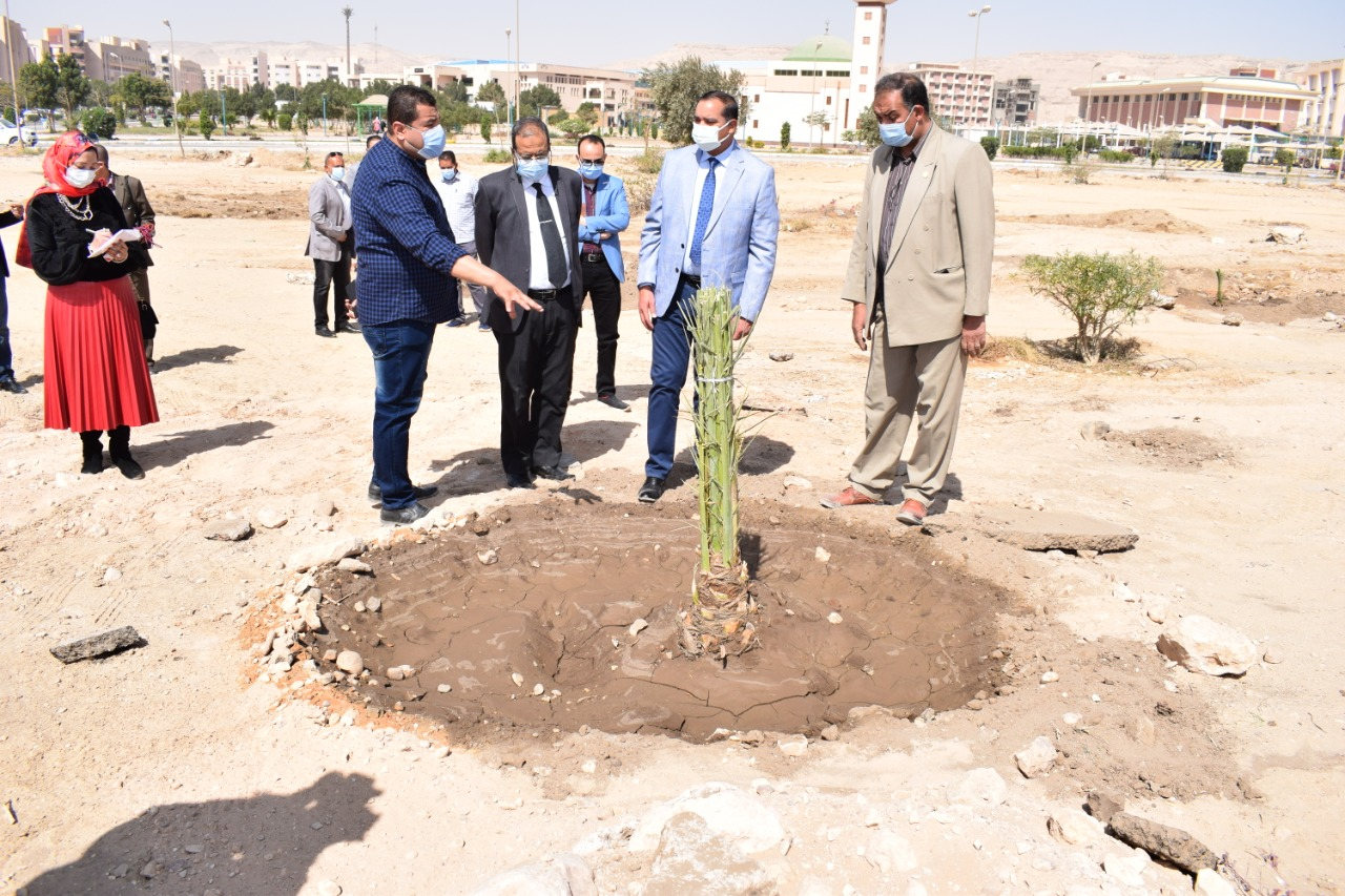 زراعة ١٢٠ شجرة نخيل مثمر بجامعة سوهاج مهداه من جمعية تنمية وحماية البيئة