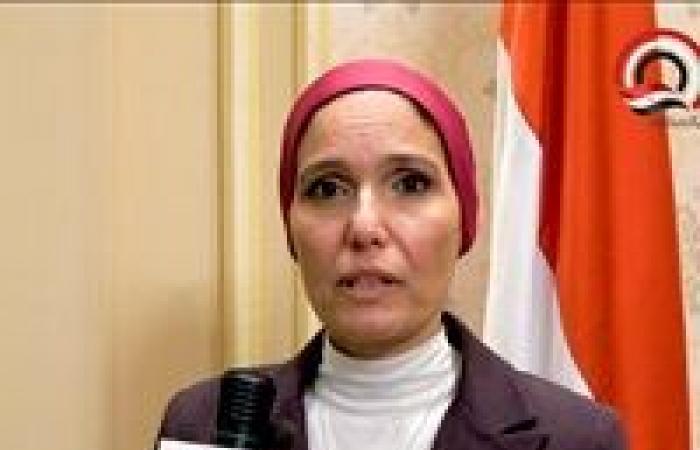 شيماء حلاوة: الموافقة على تشكيل لجنة لحفظ وتسجيل وثائق لجنة حفظ الآثار العربية