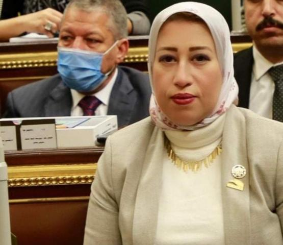 برلمانية : مشروع تنمية الأسرة المصرية يساعد على انتهاء عصر الزيادة السكانية