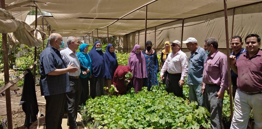 وكيل زراعة الفيوم يتفقد اعمال الادارة الزراعية بمركز أبشواي