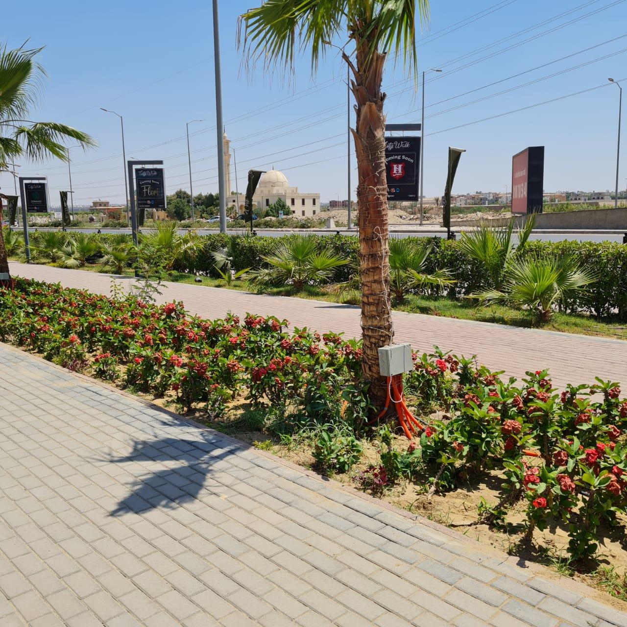 رئيس جهاز الشيخ زايد: الانتهاء من تنفيذ الممشي السياحى بطول ٦ كم بالواجهة الغربية كمتنزه لسكان المدينة