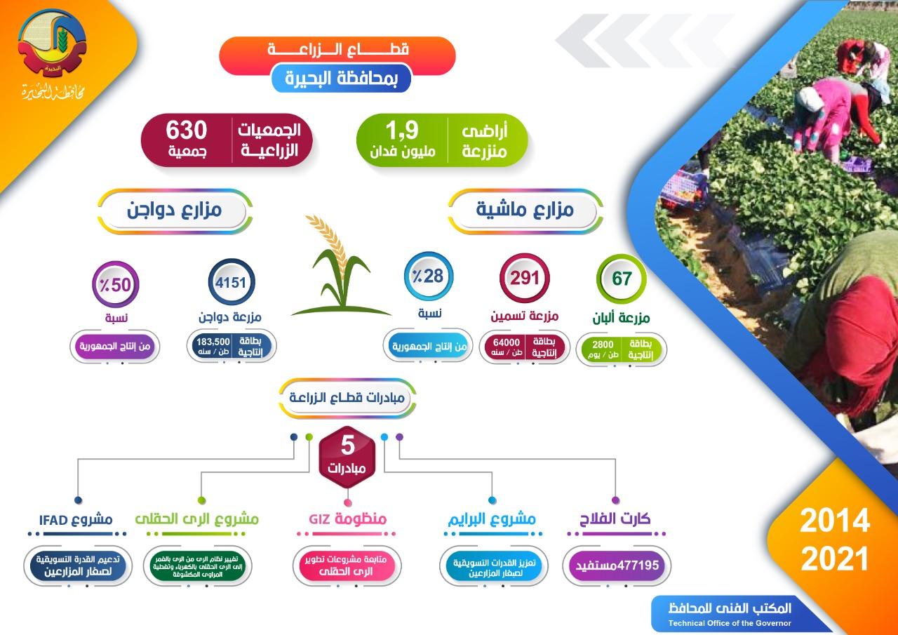 إنفوجراف قطاع الزراعة بالبحيرة : إجمالي الأراضي المنزرعة ١.٩ مليون فدان وتضم ٦٣٠ جمعية زراعية