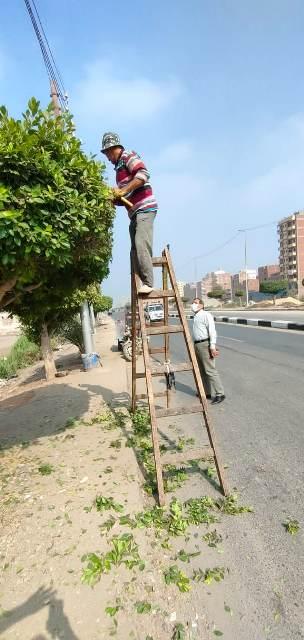 بمناسبه دخول عيد الاضحي حمله تنظيف وتطهير في أرجاء محافظه الشرقيه